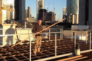Bambus Erstellung Dachterrasse Skyline Frankfurt Westend